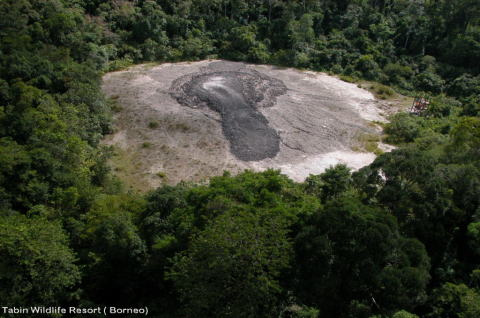 tabinmudvolcano1