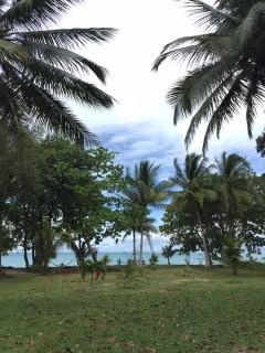リゾートから見る海