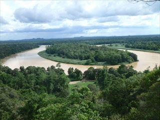 ジャングル内を駆け抜けるキナバタンガン川
